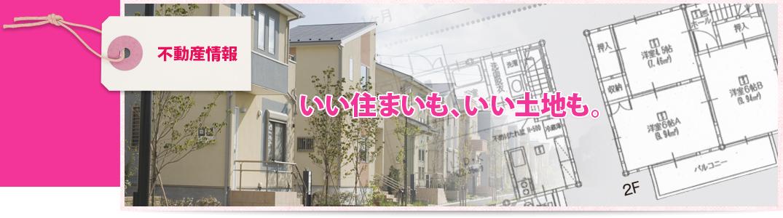 分譲住宅/分譲地/賃貸 不動産情報